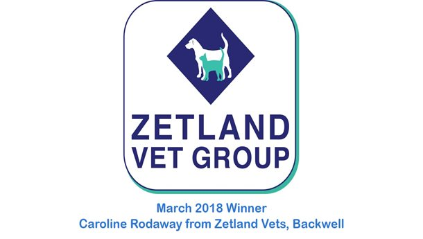 Caroline Rodaway - Zetland Vets, Backwell - March 2018